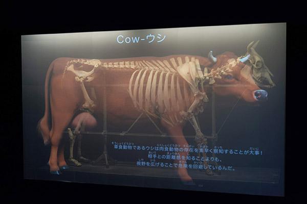 sp_exhibition/02.jpg